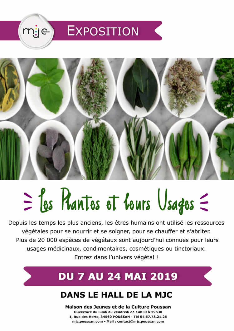 Exposition Plantes Usages 2019